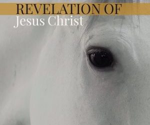 11 – Intro to Revelation